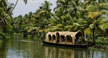Kerala Breathing Nature