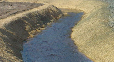 Coir Geotextiles